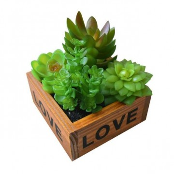 Artificial Succulents plant in wood Pot ( 2 variety)