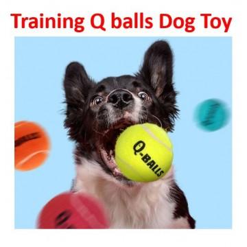 Training Q Balls Dog Toy