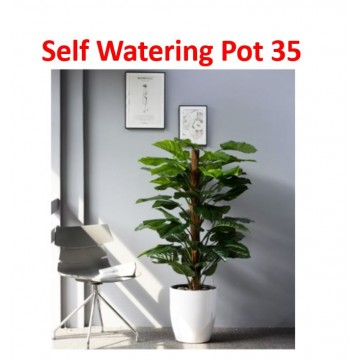 Self Watering Pot 35