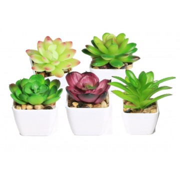 Large artificial succulent plant