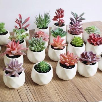 [ 3 for $10 ]Artificial Succulent Plant Table Plant Small Deco Plant