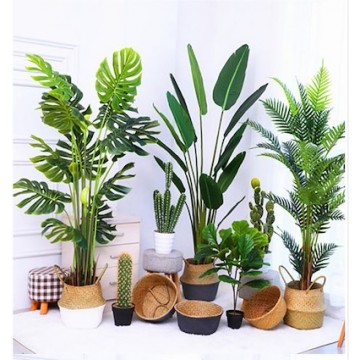 [BIG PLANT][Plant 21- Plant 29]Large Artificial Plant/Tree/Flower For Home Decor /Artificial Tree Indoor Plants
