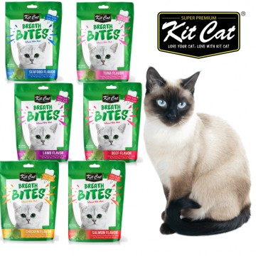 Kit Cat Breath Bite Cat Treat Cat Food 60g