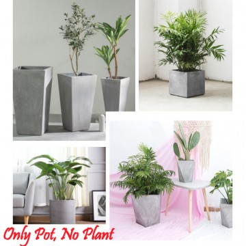 Cement Pot Planter