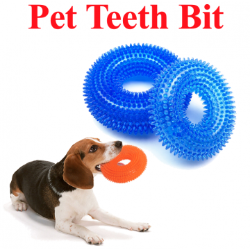 Dog Teeth Bit