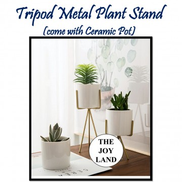 Tripod Metal Plant Stand (come with Ceramic Pot)