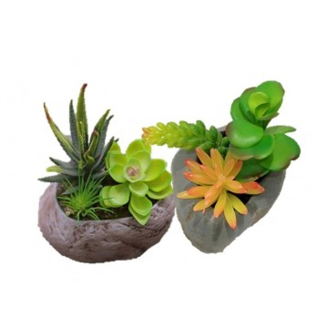Artificial Succulents Plant With Pot (3 type)