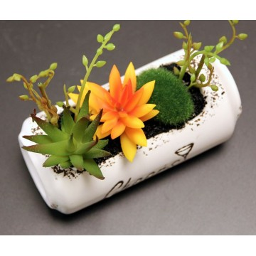 Artificial Succulents plant in Ceramic Pot