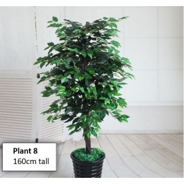Artificial Tree/Plant For Home Decor ( 160cm tall)