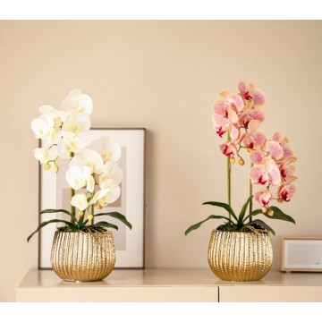 2 Stalks Artificial Phalaenopsis Orchid Stripes Gold Pot Artificial Flower Plant