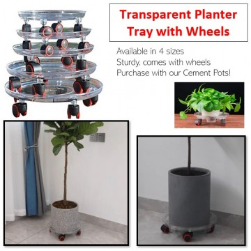 Transparent Planter Tray Moveable Trolley