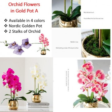 2 Stalks Artificial Phalaenopsis Orchid in Pearl A Gold Pot Artificial Flower Plant